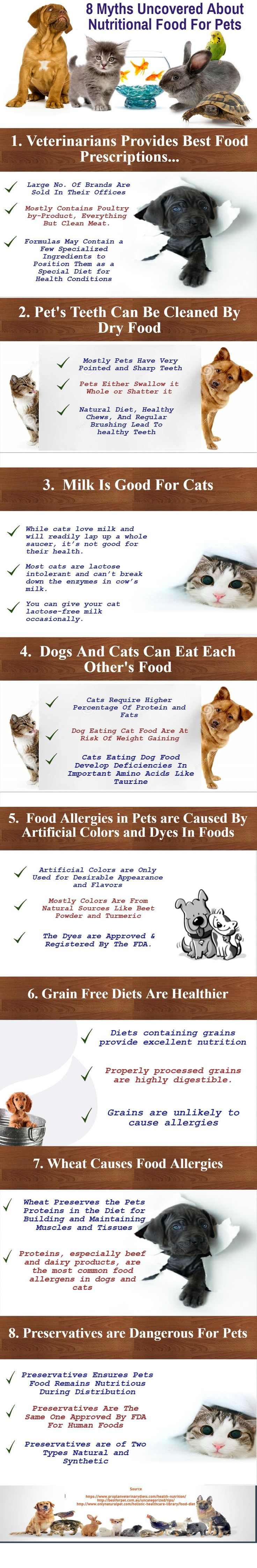 8 Myths Uncovered About Nutritional Food For Pets | Animal Bliss
