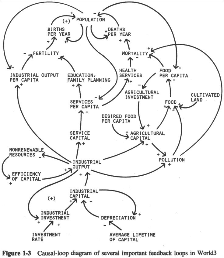 Causal-loop diagram of several important feedback loops in World3