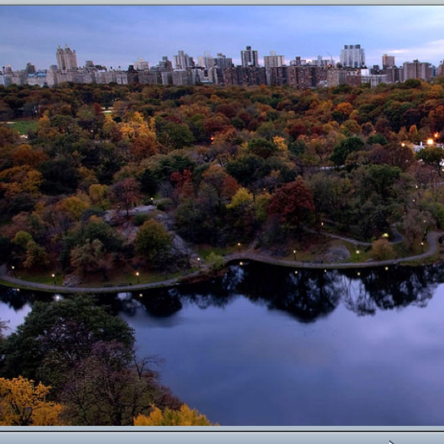 Central Park & Mid Town