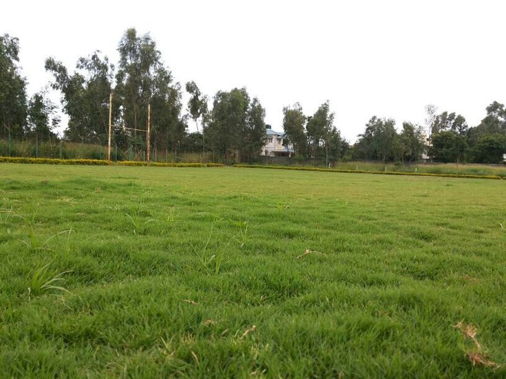 Our all new refreshed rugby field #bangalorerugbyclub