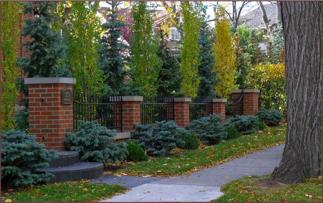 Red brick pillar fence established garden behind