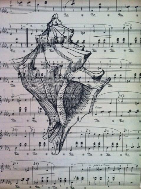 SEASHELL ART PRINT, Conch Shell, On Antique 1936 Sheet Music 8x10 - BEAUTIFUL !! | eBay