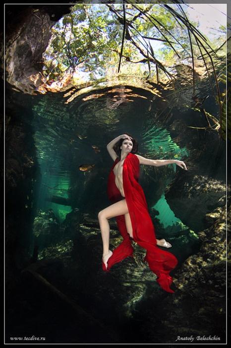 Underwater Photography by Anatoly Beloshchin