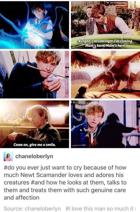 Fantastic Beasts And Where To Find Them Eddie really did this part so well. <3 him