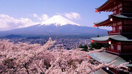 Paket Tour Wisata Jepang 2014