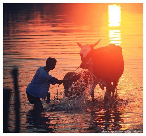 Τα χρώματα της ζωής με Rarindra Prakarsa | συμβουλές φωτογραφίας και κόλπα, εξοπλισμός, Φωτογραφία ειδήσεις, Φωτογραφία Βιβλία, Φροντιστήριο, και Φωτισμού - OneSlidePhotography.com