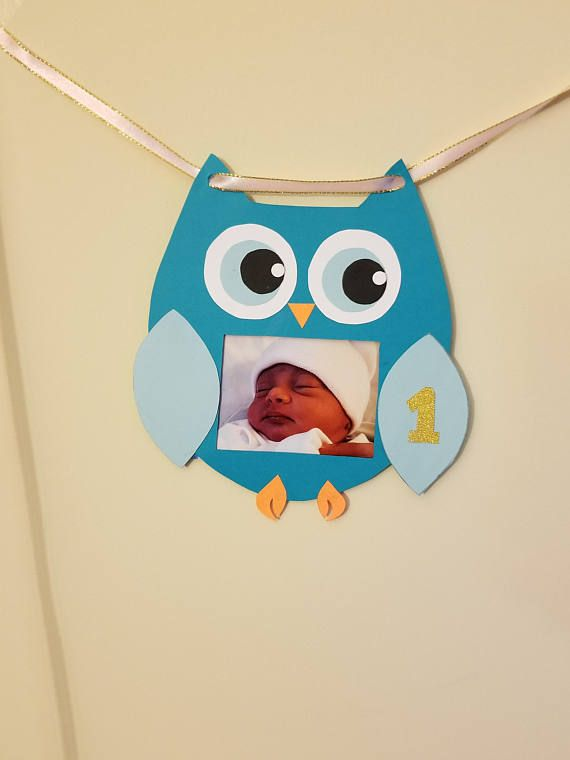 NB to 12m owl banner