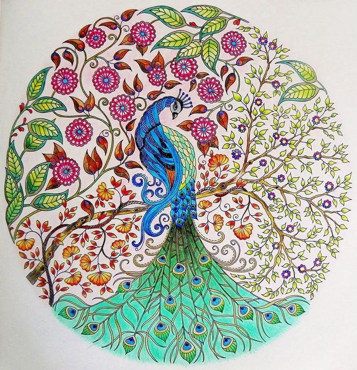Inspirational coloring pages from Secret Garden, Enchanted Forest and other coloring books for grown-ups. Páginas inspiradoras dos livros Jardim Secreto, Floresta Encantada e outros livros de colorir para adultos pavão