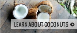 Health Benefits of Coconut Oil | Will Eating Coconut Oil Raise My Cholesterol?