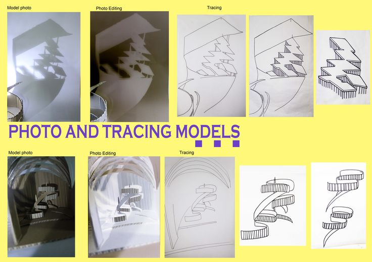 Sholia/1_photo and tracing 2