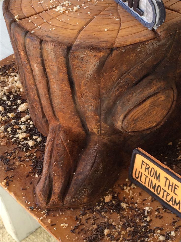 S'mores cake inside...tree stump outside