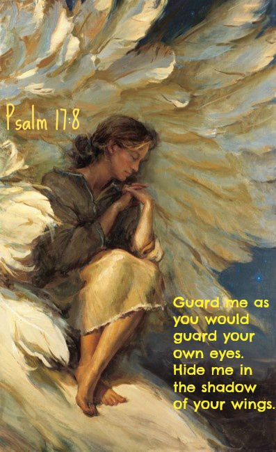 Psalm 17:8.....Guard me as you would guard your own eyes. Hide me in the shadow of your wings.