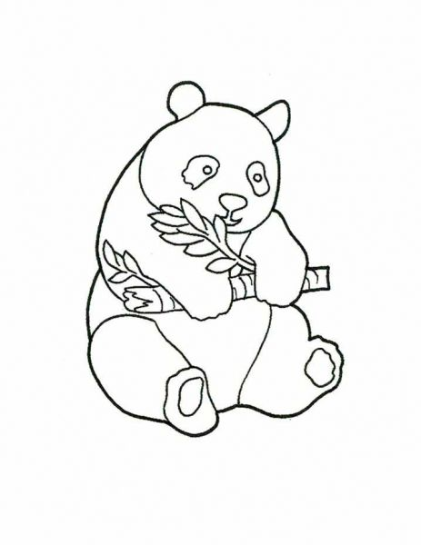 Best 25+ Panda coloring pages ideas only on Pinterest
