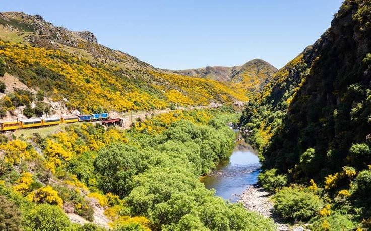 he world's most scenic railway? Taieri Gorge Best train journey in the world? You decide. But it is certainly one of the most scenic, heading 50-miles into mountain scenery that is difficult to access otherwise. On a similar note, The TranzAlpine Rail Journey from Christchurch to Greymouth has actually been ranked among the top six train journeys in the world.