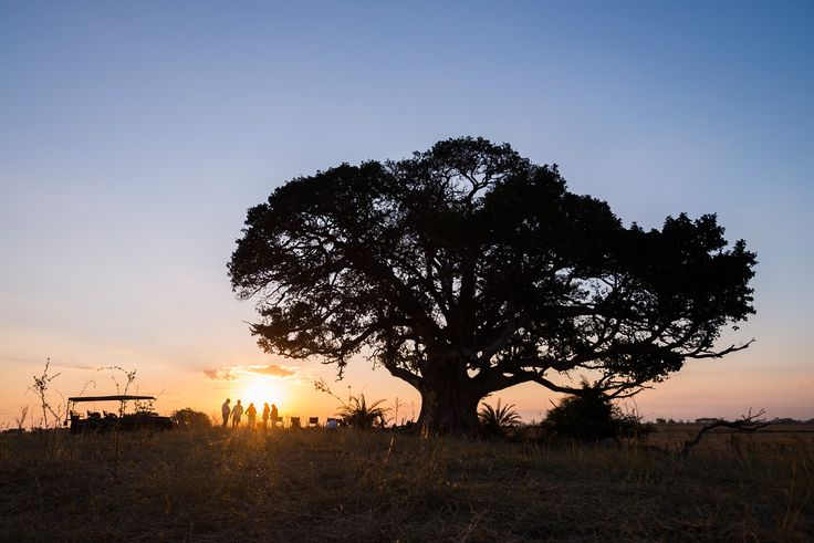 Spend the last moments of daylight watching the sunset over the plains! #busanga #mukambi