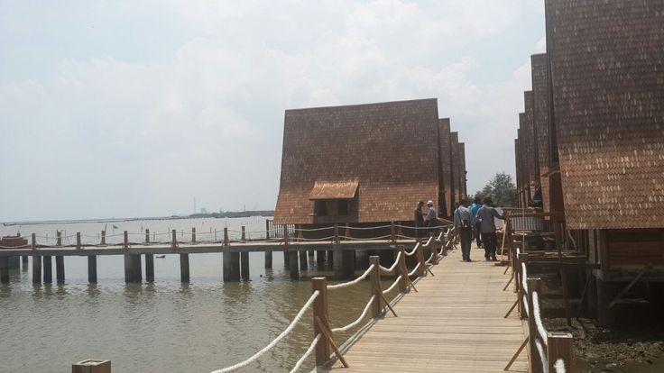 Pelabuhan Cirebon - Mini Pile - Cirebon