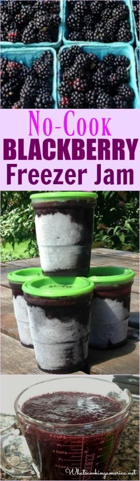 No-Cook Blackberry Freezer Jam Recipe  |  whatscookingamerica.net  | #nocook…
