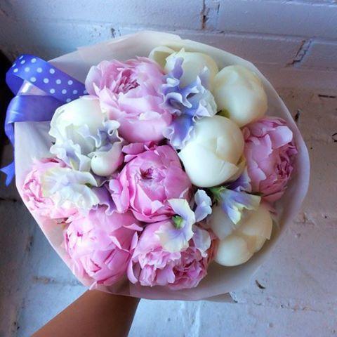 Şakayıklar güzel ötesi #flowers #peony #pink #white