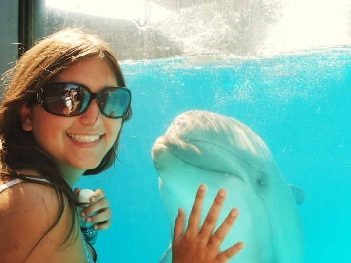 Dolphins!!!