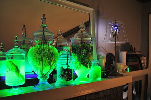 For the mantle they purchased a few oversized jars, filled them with cabbages and twigs submerged in water then backlit them with two florescent blacklight bars. Your average highlighter glows under blacklight, so to achieve the glowing jar effect they cut open a few highlighters and drained them into the water used to fill the jars.