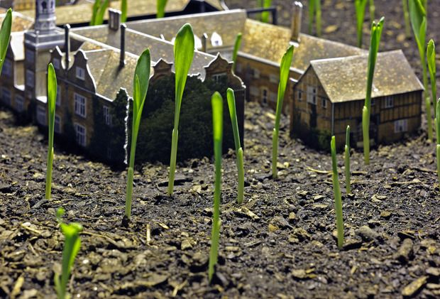 Rob Carter: Faith in a Seed. New exhibition that shows miniature replicas of three 19th Century estates being overtaken by gardens. @ ArtinGeneral