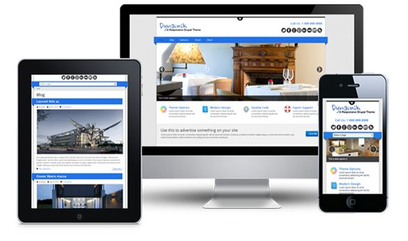 SkyLite Web gives the best service in making complete responsive websites.