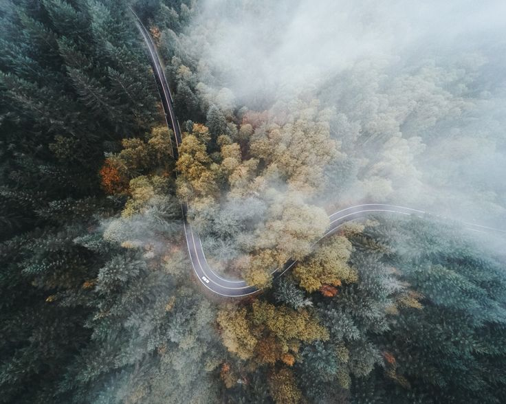 bryandaugherty:  Fall in the Northwest.