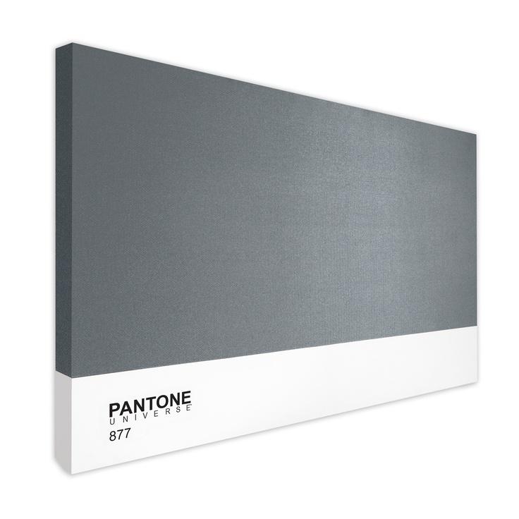 "Pantone 877  40""x60"""
