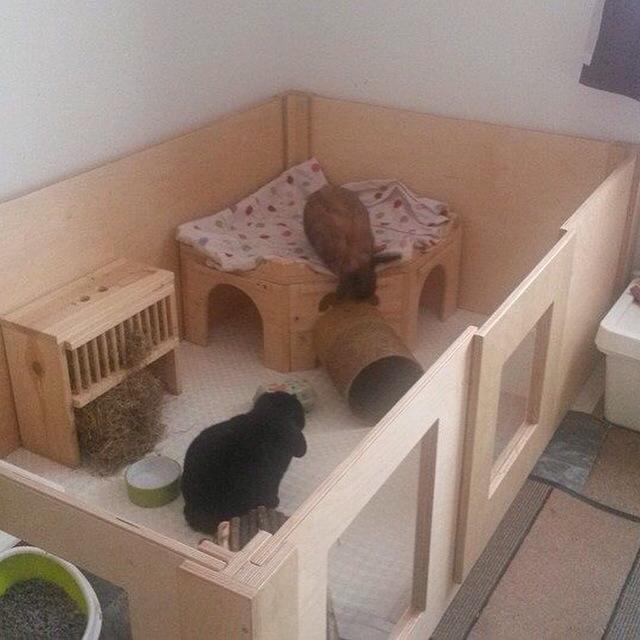 Very posh rabbit house. Happy clients!