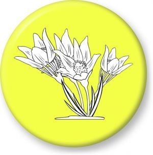 Anemone patens outline vector - Button Badge - Brooch - Gift