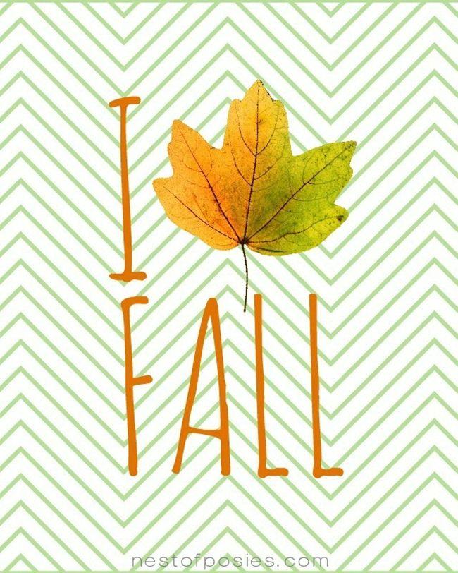Hurry up fall!!! PLEASE!!!