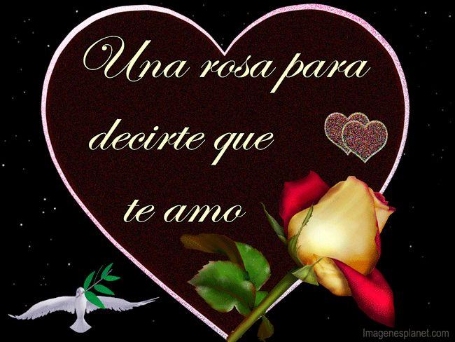 """Amor y sentimientos del corazon: Una Rosa para decirte """" Te Amo """""""