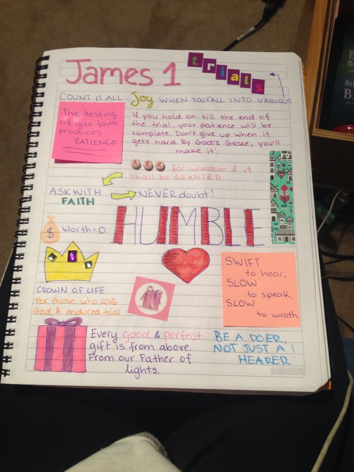 Journal entry on James chapter 1 :)