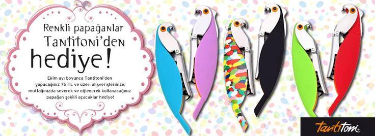 Renkli papağanlar Tantitoni'den hediye!   #ErastaAntalya mağazamıza bekliyoruz.