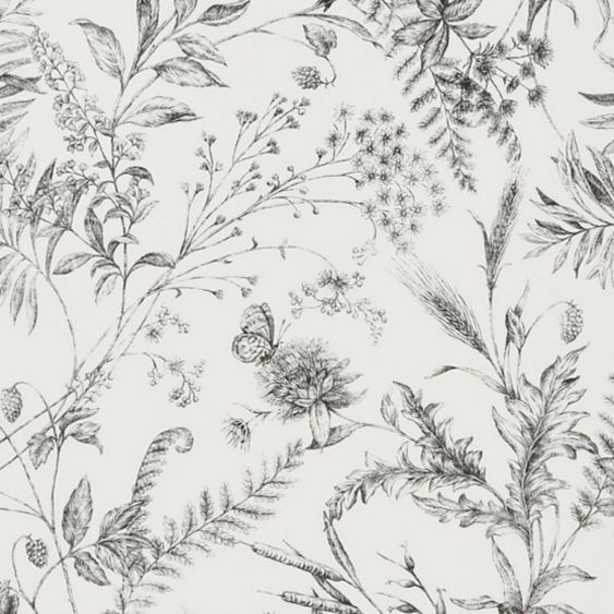 Fern Toile – Etched Black wallpaper