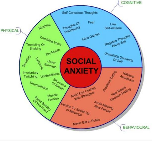What does social anxiety look like?