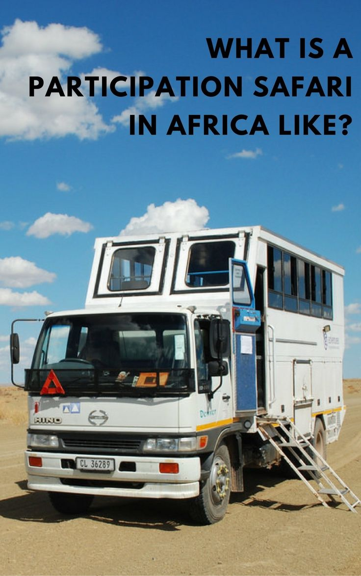 What are the roles like on a participation camping safari?