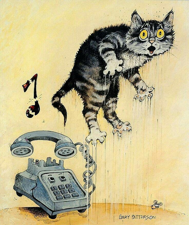 Смешные картинки котов и кошек нарисованные, марта для