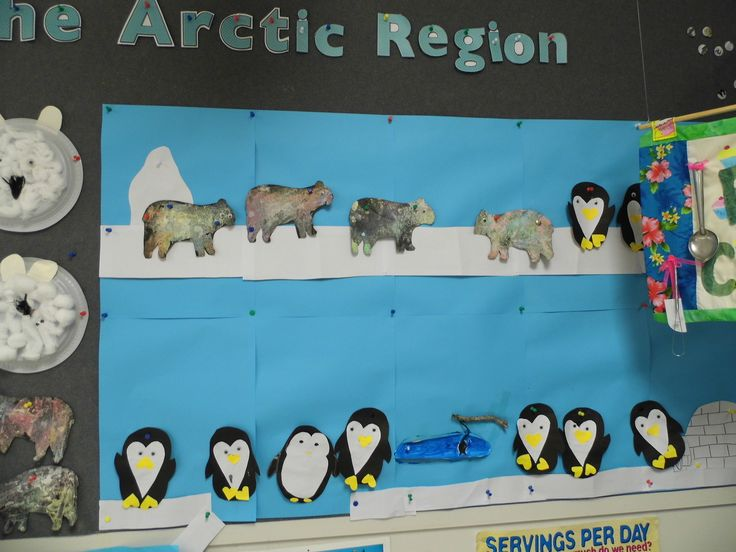 The Arctic Region wall display... paper plate polar bear faces using cotton wool balls; grated chalk onto black paper for polar bears; penguin collage. (Part of the children's interest in animals).