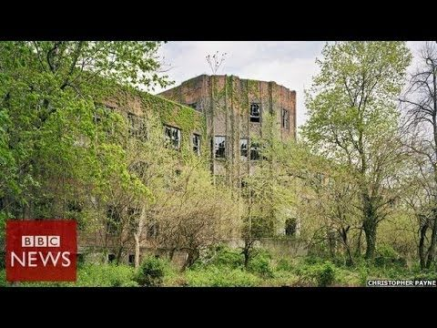 BBC youtube video slideshow of abandoned North Brother Island, New York