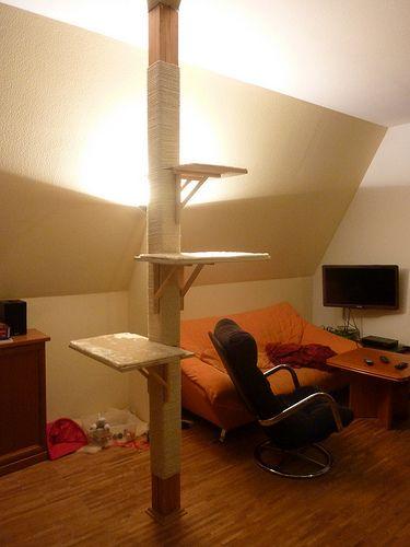 Holzpfeiler mit Sisalseil umwickeln - Seite 2 - Katzen Forum