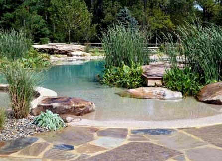 Natural Swimming Pools or Swimming Ponds - Managed properly, natural swimming pools have crystal clear water and require no chemicals to maintain, as they are self-cleaning mini-ecosystems.