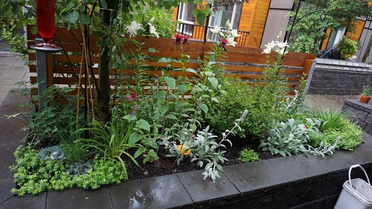 Perennial planter box