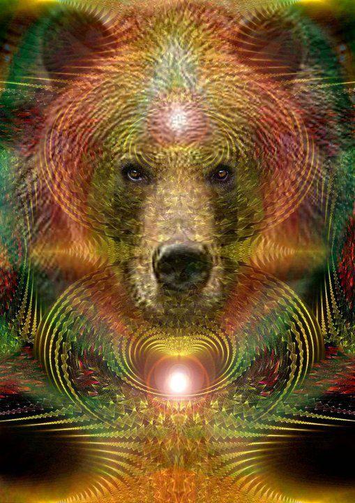 spirit of bear