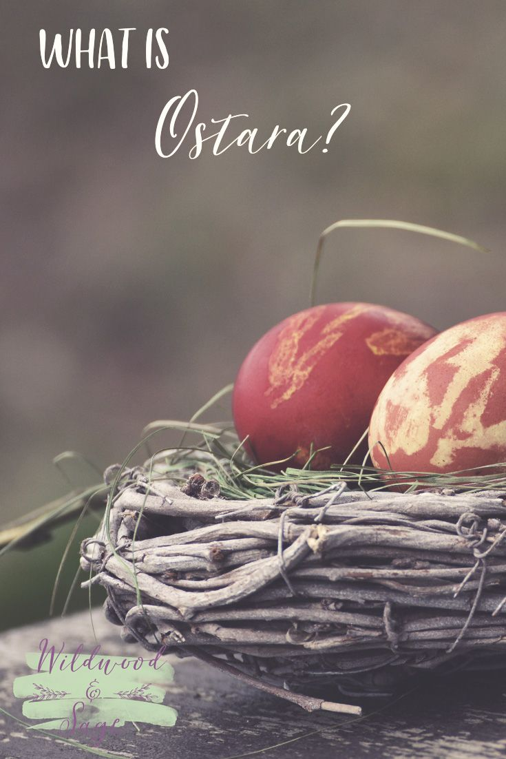 What is Ostara? Learn all about the Spring Equinox, Ostara. It is the first day of spring, the perfect time to celebrate new beginnings, new life, love and fertility. Plus get Ostara correspondences, and other fun Ostara celebration ideas!