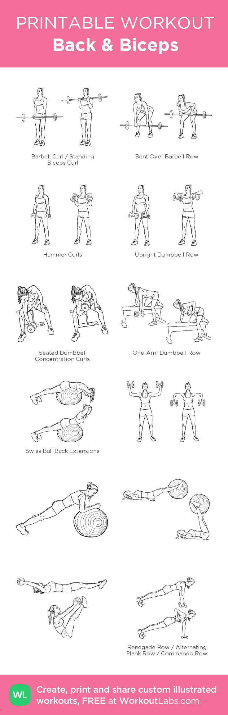 Back & Biceps: my visual workout created at WorkoutLabs.com • Click through to customize and download as a FREE PDF! #customworkout