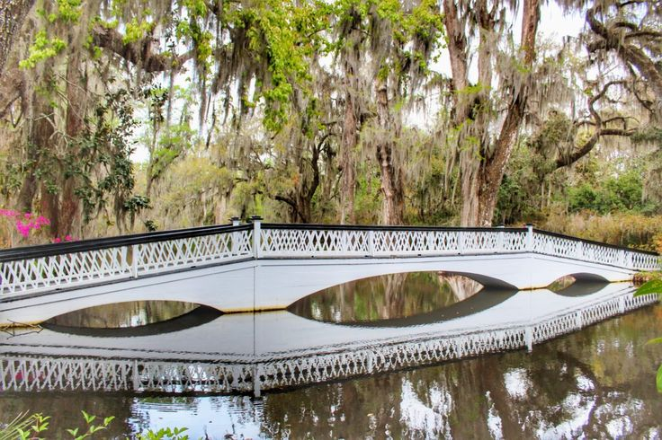 Why It's Not Too Late to Visit Charleston, SC This Spring