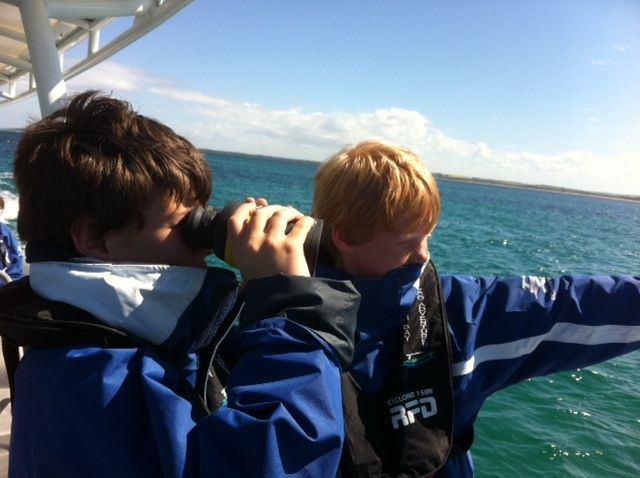 Its always good to get out on the water with the children.  Our friends at South Bay Eco Adventures know how to keep them entertained.