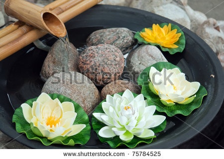 Beautiful Japanese Water Lilies Flowers Arrangement With A Bamboo Waterfall Part 70