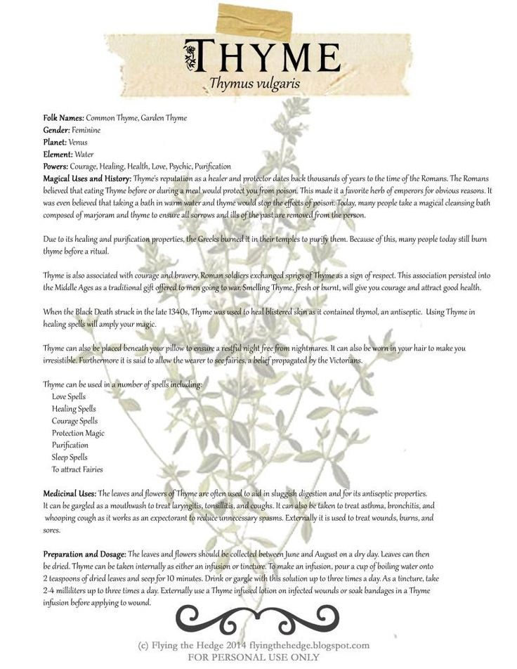 437 best herbal kitchen magic images on pinterest witch craft free bos page on the magical and medicinal uses of thyme fandeluxe Images